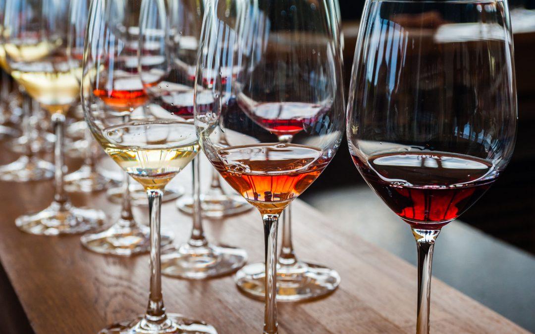 Blind Wine Tasting e Vitigni e Terroir