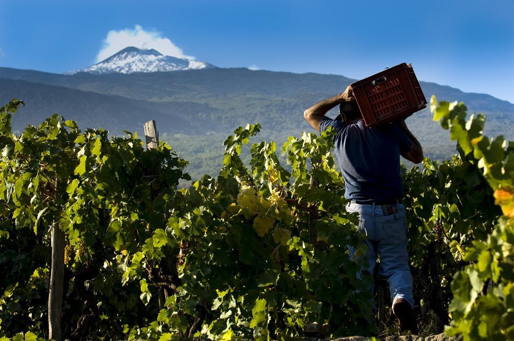 Tre giorni sull'Etna