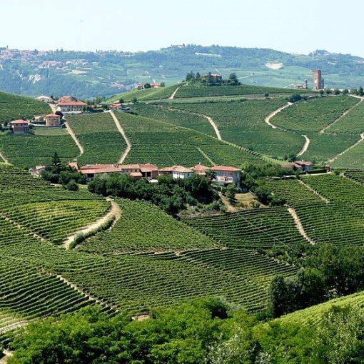 Alto Piemonte
