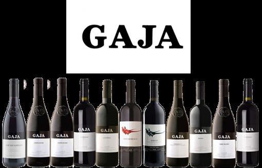 Gaja Gamma dei vini