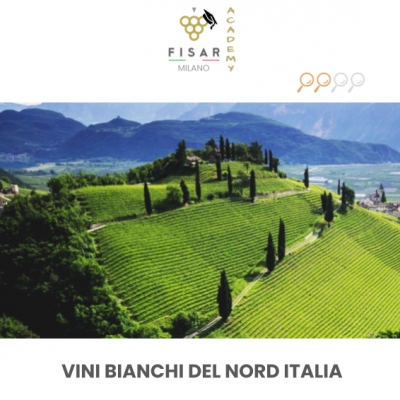 Vini bianchi del nord italia