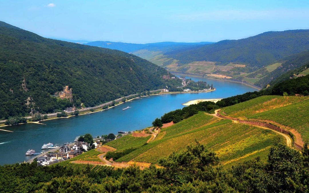 Non solo Riesling: viaggio nella Germania del Vino