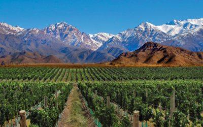 L'Argentina del Vino in degustazione
