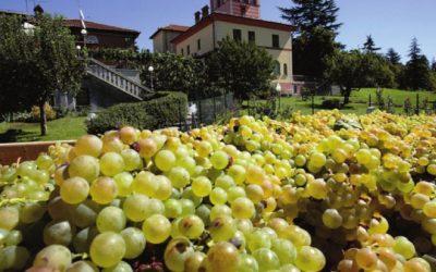 Spumanti e il Gavi che non teme il tempo: FISAR Milano a Wine Days Italy con le migliori etichette di Tenuta La Scolca