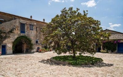 Viaggio in Sicilia con Tasca d'Almerita