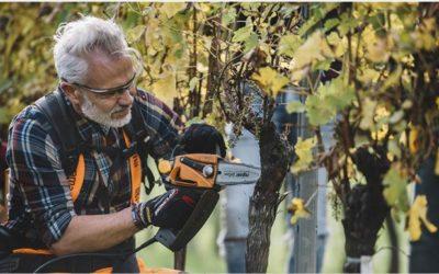 Marco Simonit vince 'Nobel' letteratura vitivinicola