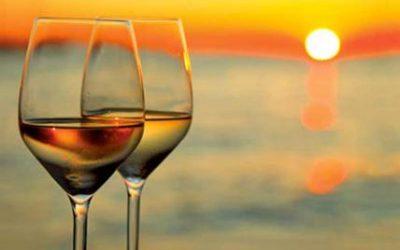 Vino, berlo fa bene alla salute. Ecco il numero giusto di bicchieri