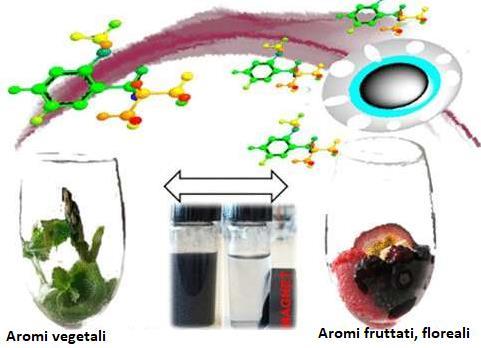 Le nanotecnologie al servizio del vino