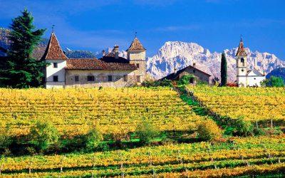 """""""L'Alto Adige nel bicchiere"""": ingressi scontati per gli Associati FISAR"""