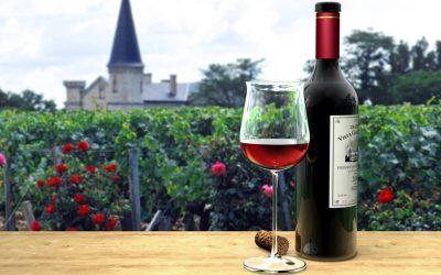 I rossi della Côte de Nuits: l'eleganza dei Pinot Noir provenienti dagli Champs-Elysées della Borgogna