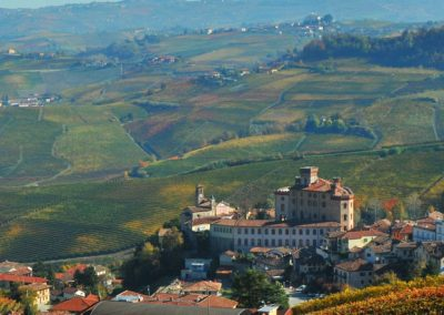 Wine tour Barolo