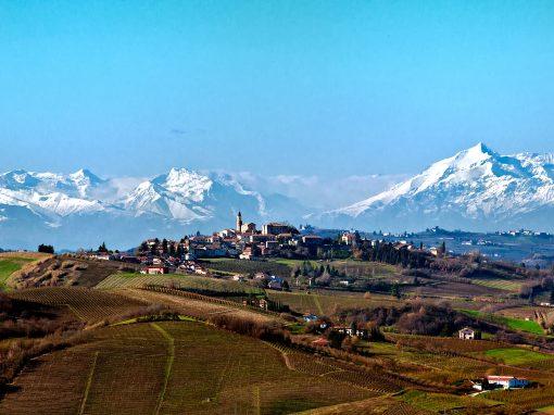 Wine tour Monferrato